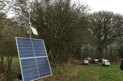 bees, beehives, beelife, bee habitat, offgrid, off gridpower system, off grid communication, beekeeper, communication, inmarsatglobal, inmarsat